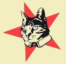 Rumble Cat