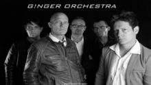Ginger Orchestra