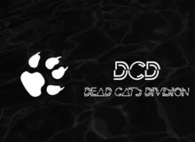 DEAD CATS DIVISION