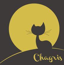 Chagris