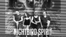 nightbird spirit