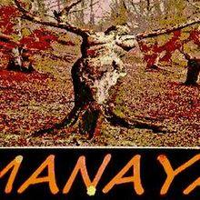 Manaya