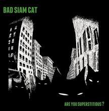 Bad Siam Cat