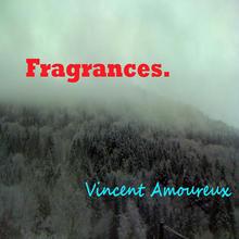 Vincent Amoureux & les acolytes anonymes
